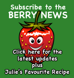 Berry News Subscription